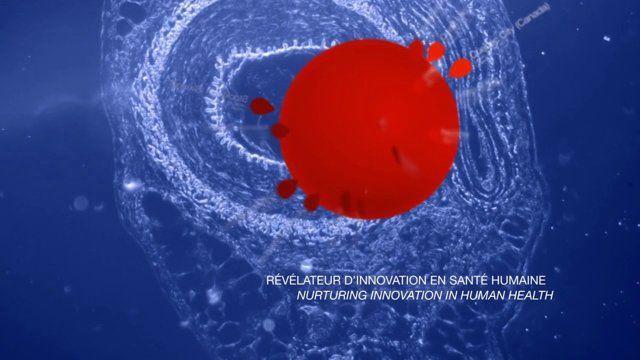 """Pour 2014, Inserm Transfert """"révélateur d'innovation en santé humaine"""" nous a demandé de réaliser sa carte de vœux dont vous pouvez voir ici la version digitale animée."""