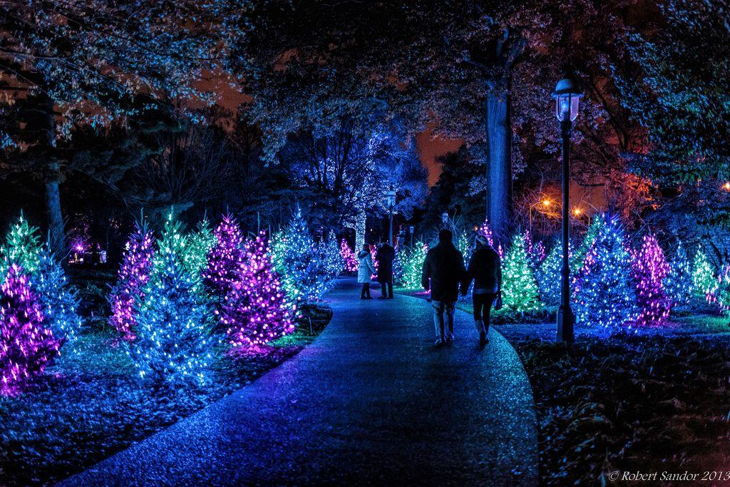 Garden Glow 2 Missouri Botanical Garden Botanical Gardens Atlanta Botanical Garden