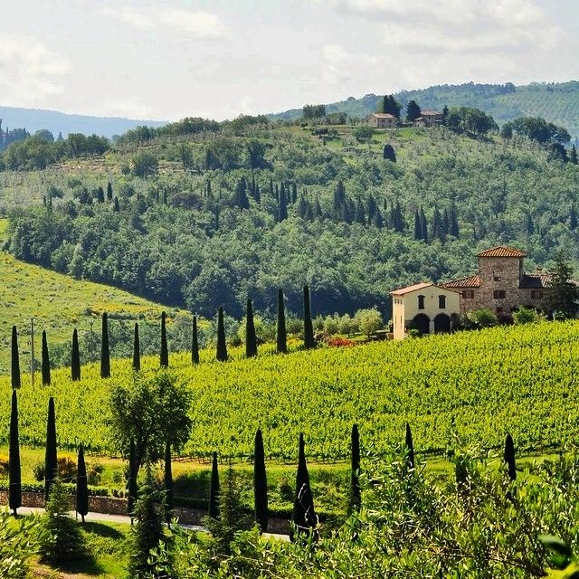 Stay in a villa in Chianti #livelikeyouretraveling Travel Like a Local in Italy, Tour local producers, wine tours in Chianti, cheese workshop...