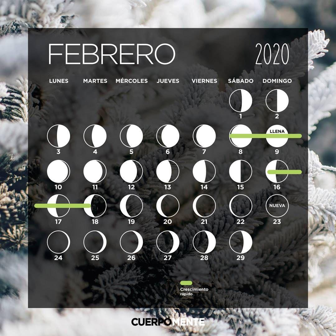 Calendario Lunar De Febrero 2020 Moon Calendar Calendar Moon