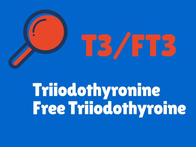 Image result for triiodothyronine test image free