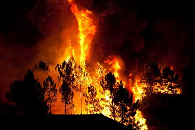 Talking to Children About Wildfires and Other Natural Disasters
