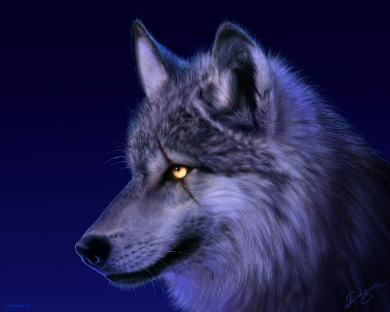 Gypsy Magic Wolf Lore And Superstition