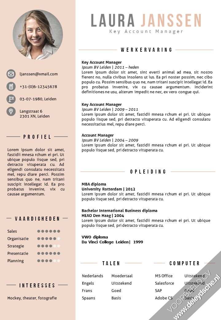 CV Sjabloon 25 | Layouts, Resume ideas and Infographic