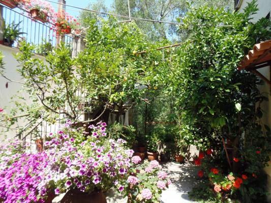 terrazze fiorite - Cerca con Google | Terrazze Fiorite -Photo ...