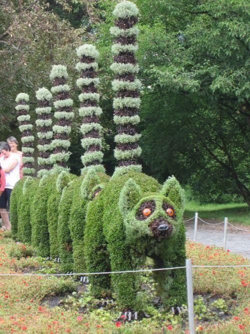 9e6c33a97b37a4b16de3127c4f2b11a8 - What's Happening At The Botanical Gardens
