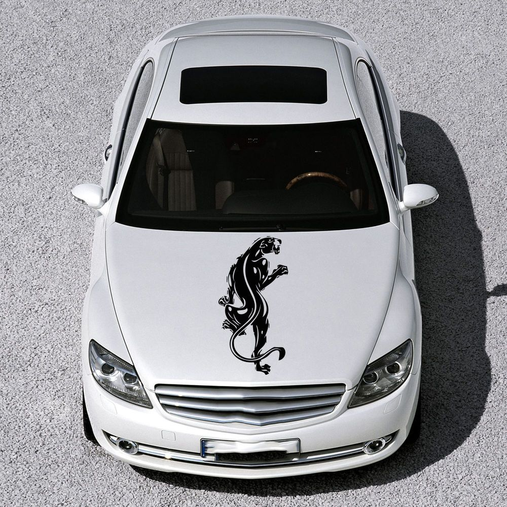 Wildcat beast predator tiger hood car vinyl sticker decals cute design sv2677