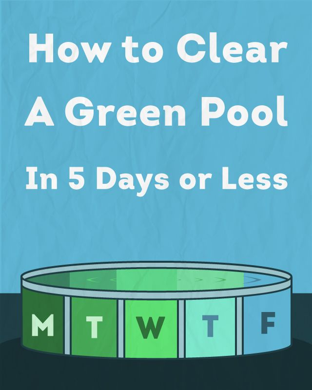 How To Clear A Green Pool In 5 Days Or Less Swimming Swimming Pools And Backyard