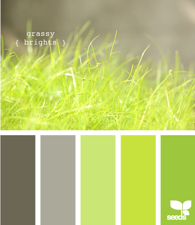 Home Page Green Colour Palette Design Seeds Color Palette
