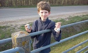 Ballumerbocht (Ameland, 2-4-2011)