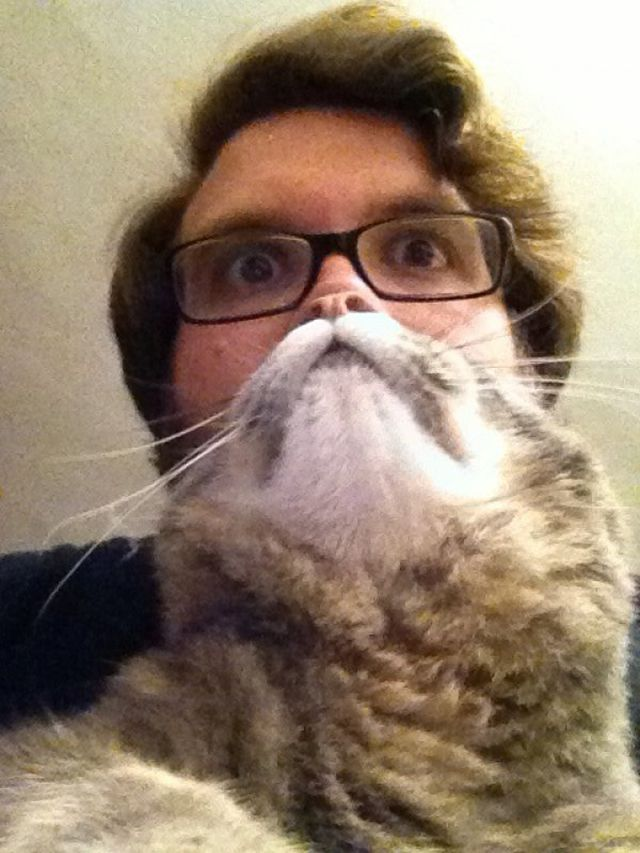 Cat Beards, A Photo Meme Where People Place a Cat in Front of Their Face to Make a Furry Beard