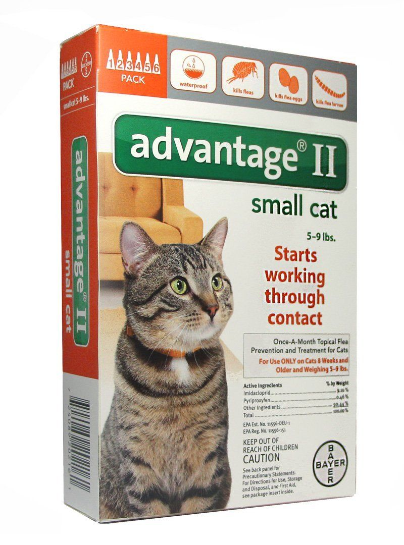 Bayer 004bay 04461677 Advantage Ii For Small Cats 5 9 Lbs Orange 6 Months You Can Find More Details By Visit Flea Control For Cats Cat Fleas Small Cat