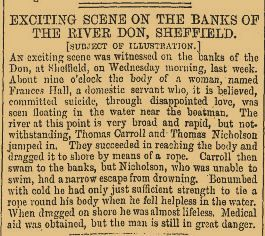 EXCITING SCENE ON THE BANKS OF THE RIVER DON - October 1883