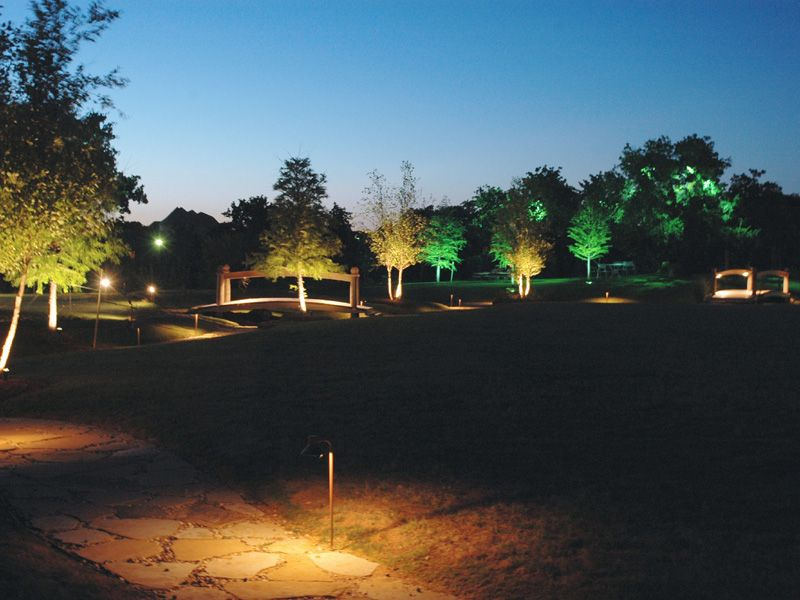 Tree Lighting And Pathway Lights Installation By Dallas
