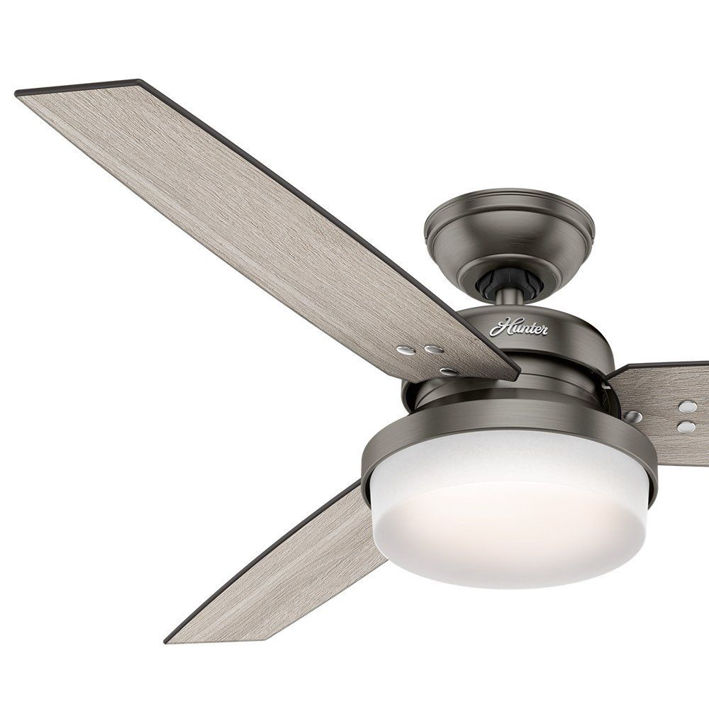 Hunter Fan 52 Brushed Slate Contemporary Ceiling Fan With Led Light Kit And Remote Control Ceiling Fan Contemporary Ceiling Fans Ceiling Fans Without Lights