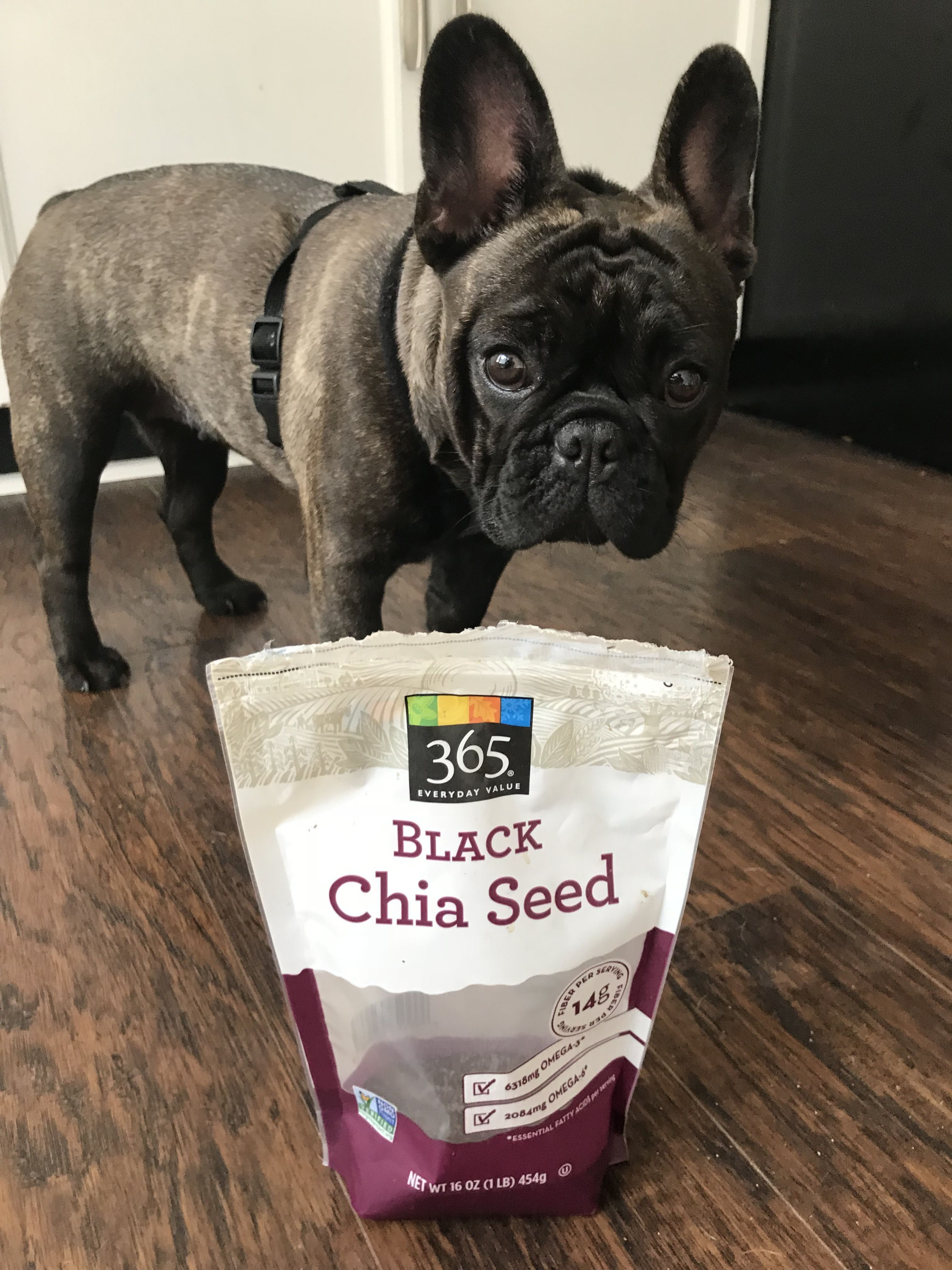 Lola Loves Her Black Chia Seeds From 365 Whole Foods French