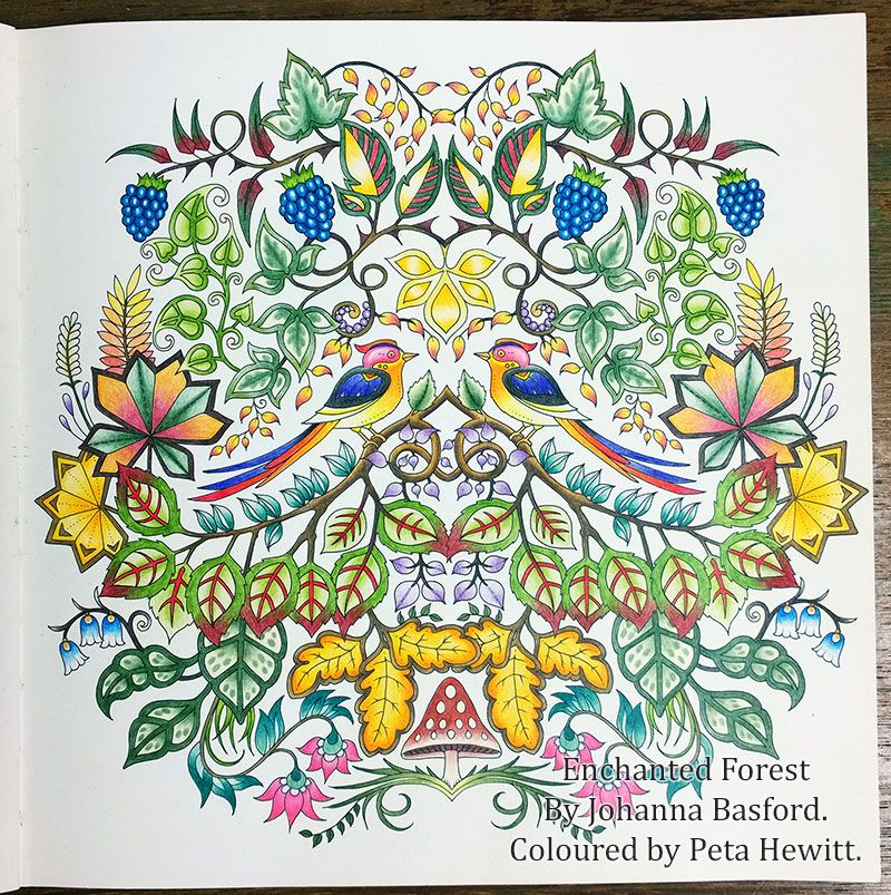Coloring Books Enchanted Forest New Pictures And A Tutorial