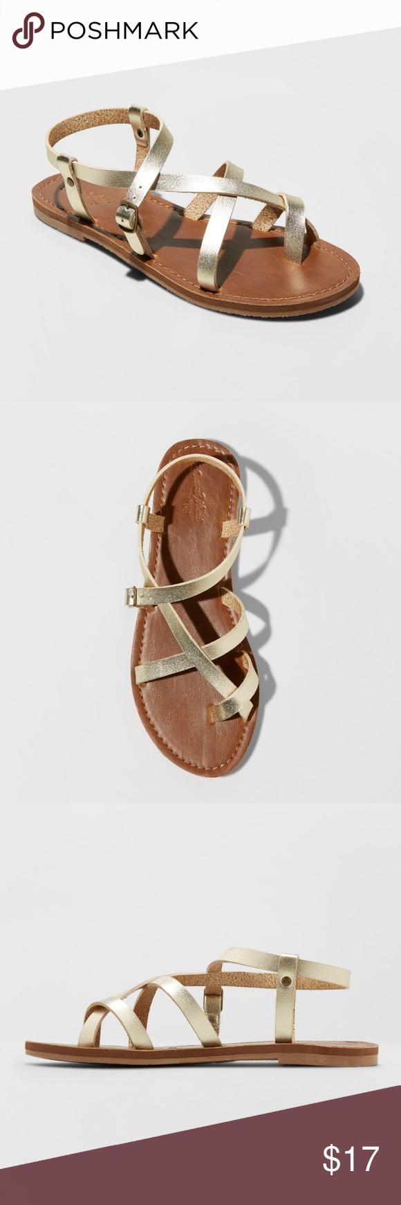 fcff4ed80e45 Gold faux Leather Lavinia Toe Wrap Thong Sandal Universal Thread Women s  Lavinia Toe Wrap Thong Sandal