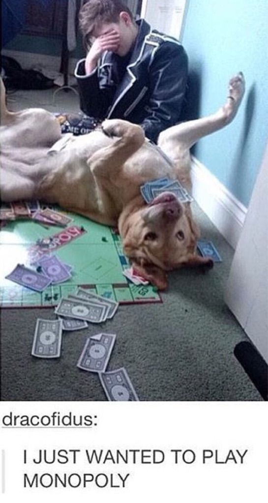 Monopoly isn't for everyone