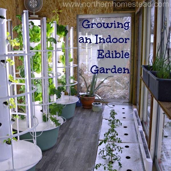 Indoor Hydroponic Vegetable Garden Growing an indoor edible garden video edible garden gardens and growing an indoor edible garden video workwithnaturefo