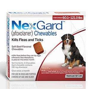 Nexgard Afoxolaner Chewables Beef 61 120lbs 6tabs Dogs Fleas Tick Control For Dogs