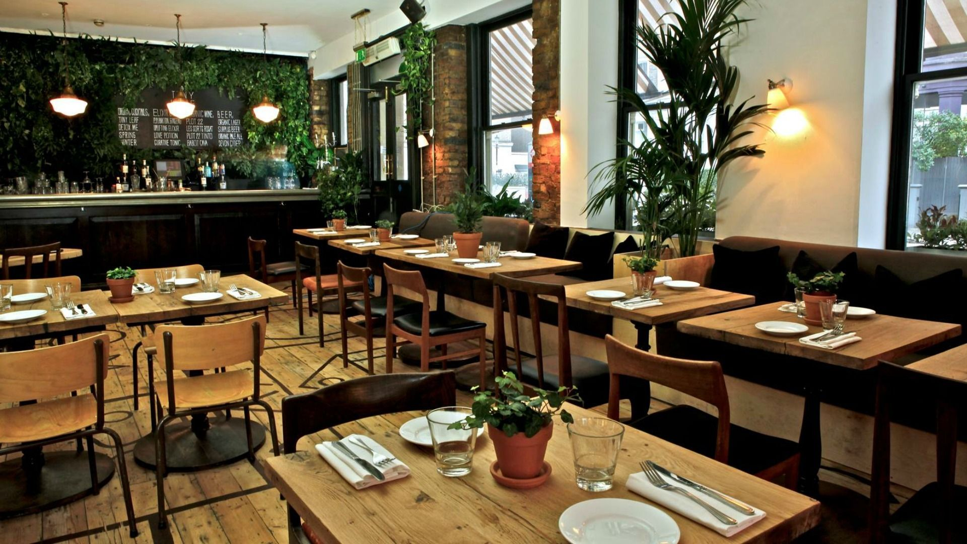 Tiny Leaf Is A Restaurant All Environmentally Conscious People Will Welcome Zero Waste Restaurant Vegetarian Restaurant