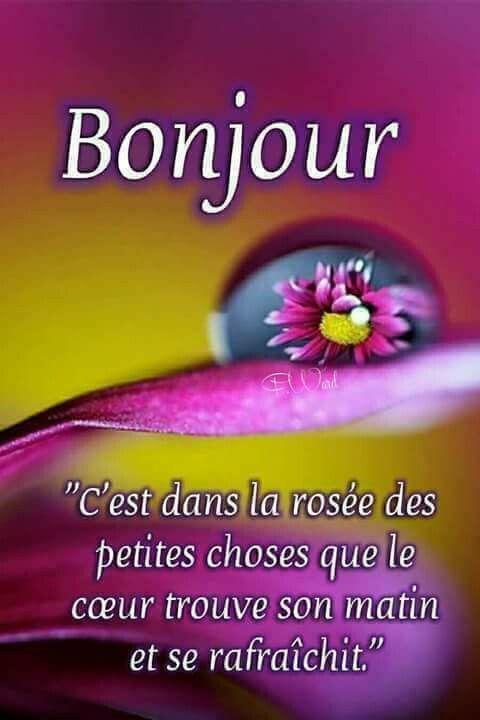 Poeme Bonjour Image De Bonne Journée Citations Du Matin