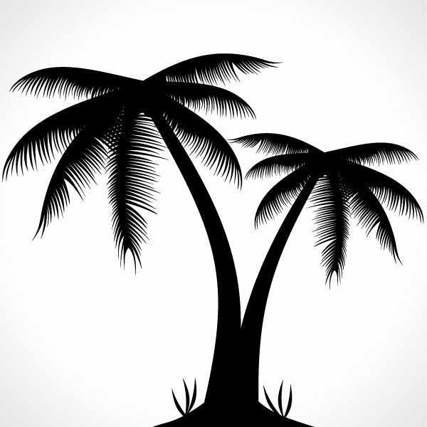 Palm Tree Silhouette Vector Illustration Palm Tree Clip Art Coconut Tree Drawing Palm Tree Drawing