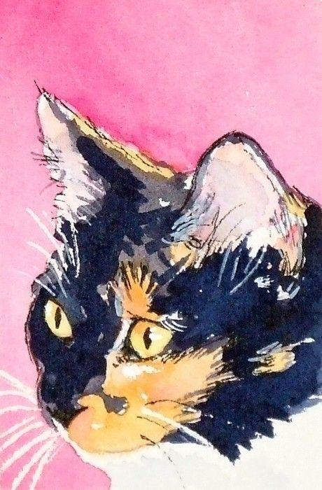 Cali Watercolor Calico Cat Art Print Cat Art Watercolor Cat Cats Illustration