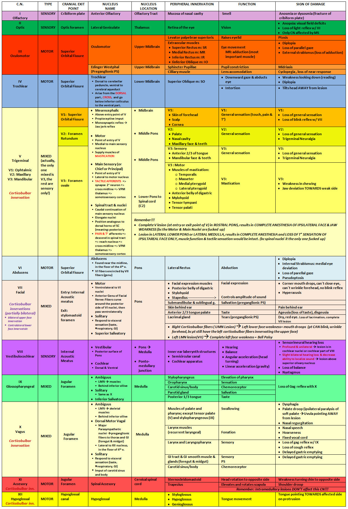 Cranial Nerve Chart With Name Type Cranial Exit Point