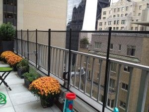 Mesh Baby Proofing Central Park South Safety And