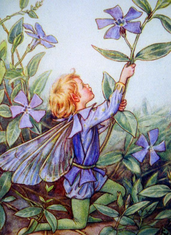 1930s Periwinkle FAIRY CICELY Mary BARKER Ideal for Framing