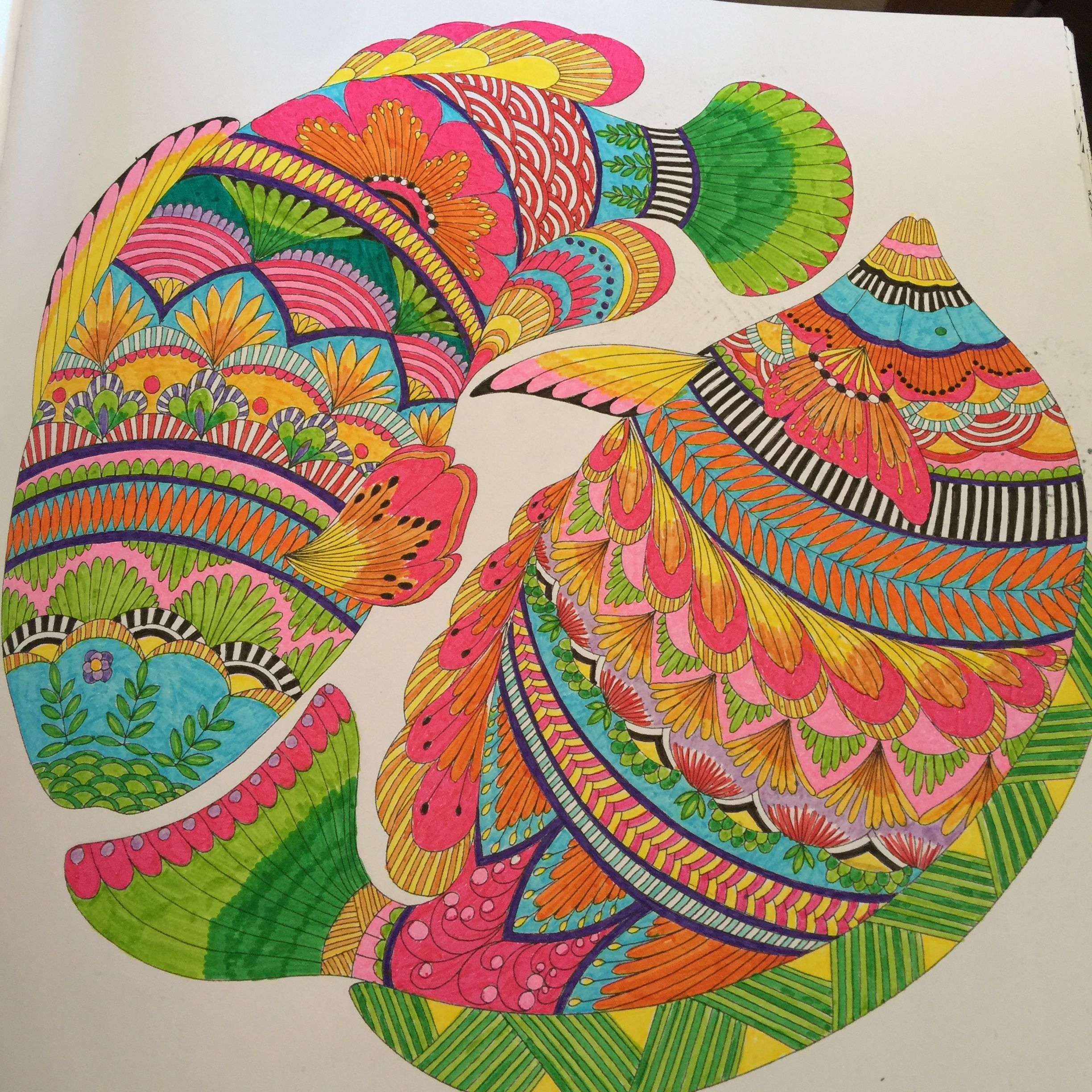 Colouring From My Animal Kingdom Colouring Book Milliemarotta Fish Millie Marotta Coloring Book Animal Kingdom Colouring Book Millie Marotta Animal Kingdom