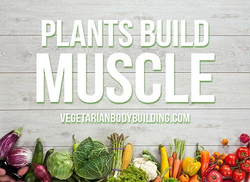 How To Build Muscle With A Whole Food Plant Based Diet Vegan Muscle Build Muscle Plant Based Lifestyle