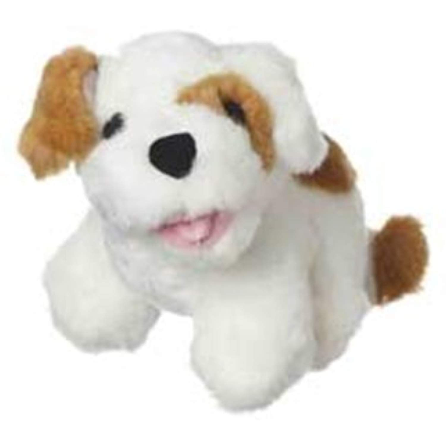 Multipet Look Who S Talking Dog Dog Toy Colors May Vary Check