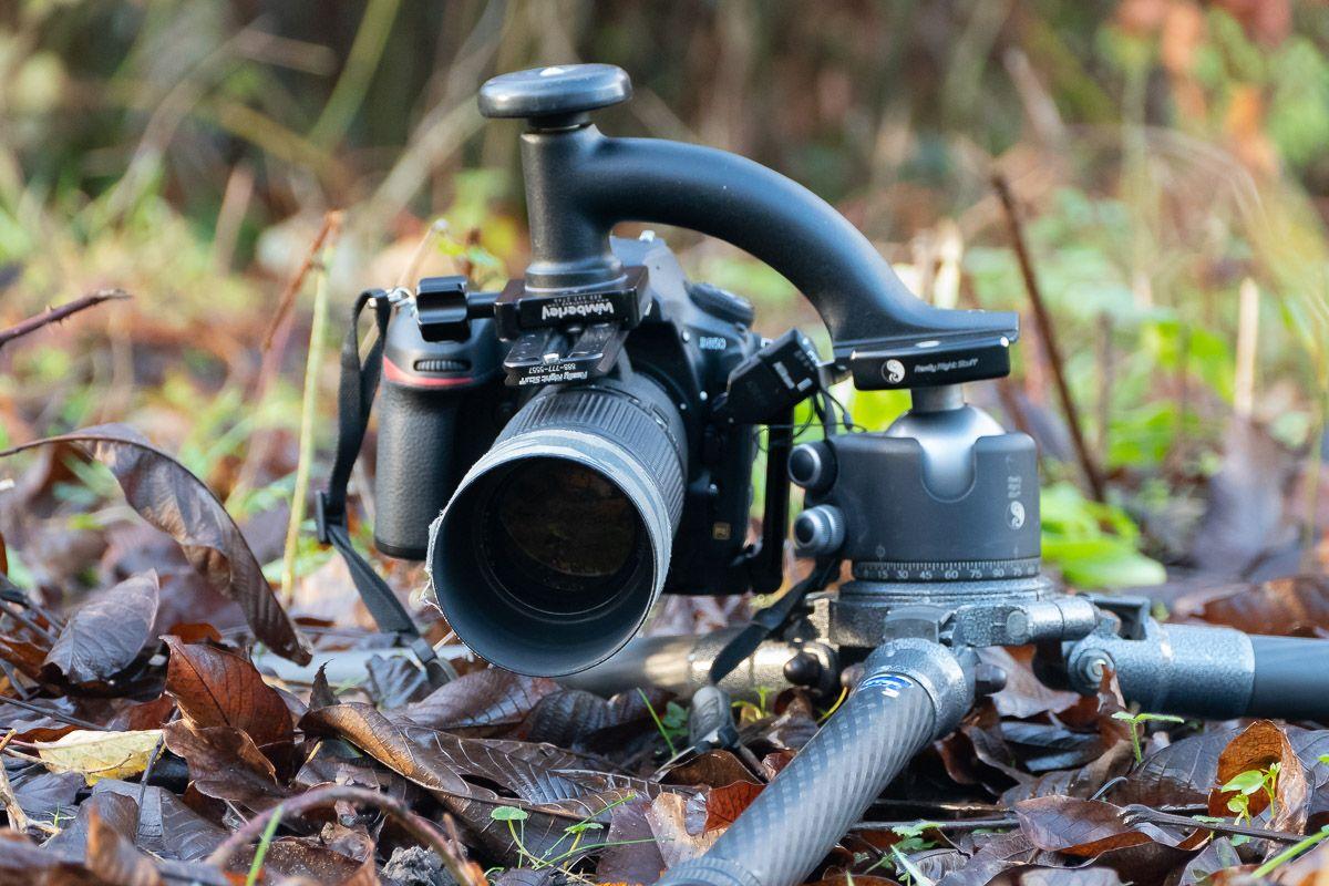 Nikon Af Micro Nikkor 200mm F 4d If Ed Lens Review Lens Nikon Micro