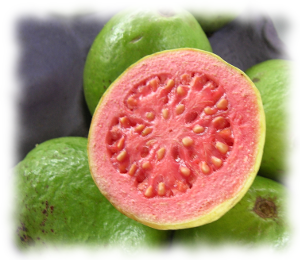 One of the new kitchenaid artisan mini mixers comes in a guava health benefits of guava guava is a laxative fruit being a rich source of dietary fiber it helps to cure constipation magnesium in guavas helps to ccuart Image collections