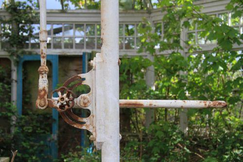 Asylum Greenhouse | UK