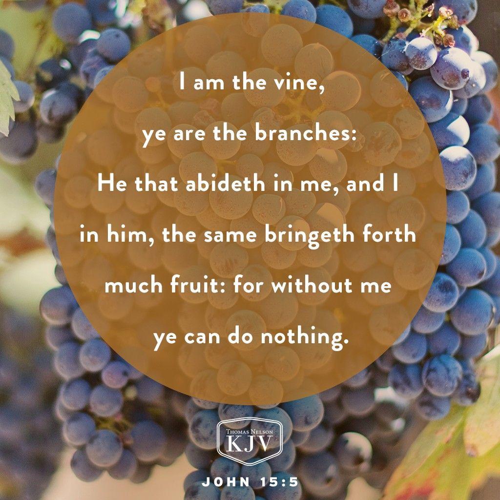 KJV Verse of the Day: John 15:5-8 | Daily Verse | Pinterest