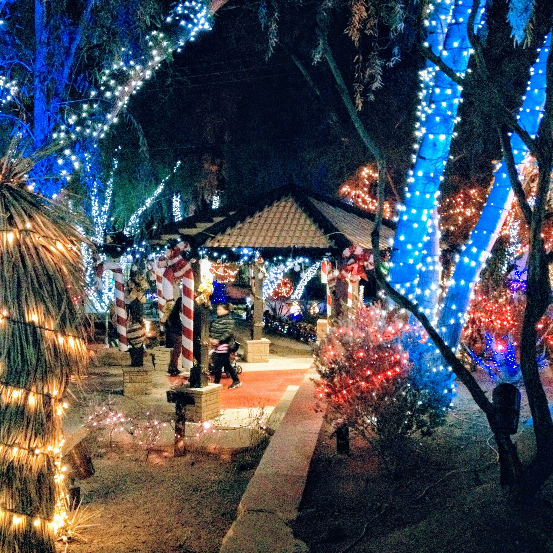 Ethel M Chocolate Factory & Cactus Garden Christmas in