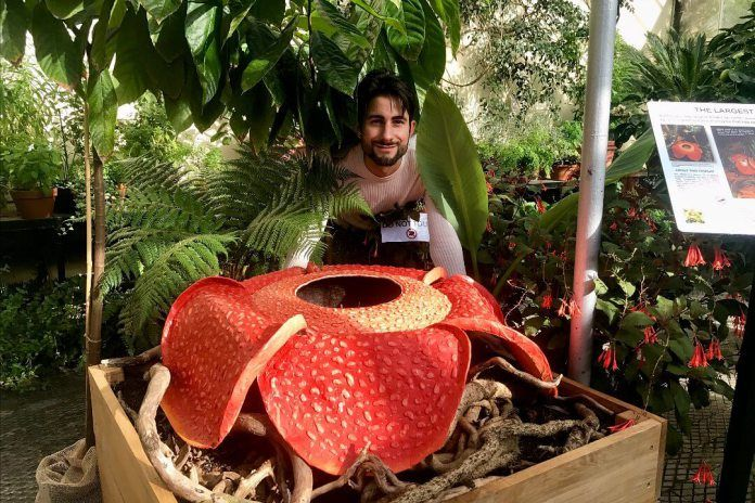 Rafflesia Arnoldii Famous For Producing The Largest Individual Flower Known On Earth Is One Of The Most Unus Unusual Plants Oxford Botanic Garden Plant Science