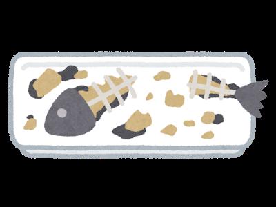 Illustration插畫 おしゃれまとめの人気アイデア Pinterest 沙 沙 魚イラスト 動物 顔 魚