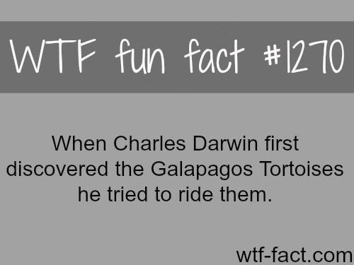 Wtf fun facts- lol i would too