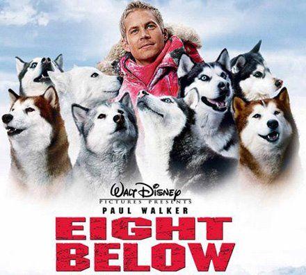 8 below movie - Google Search | Movies | Paul walker movies