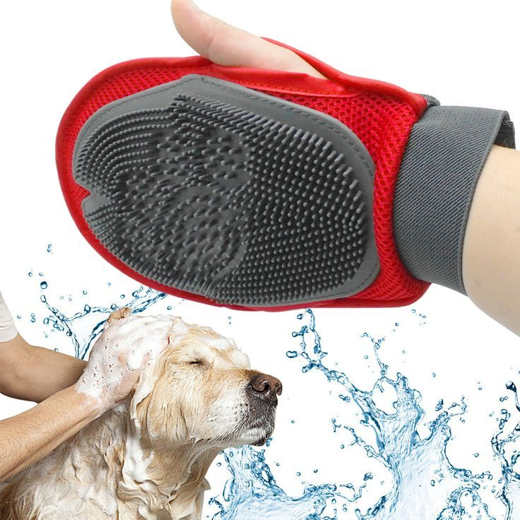 Pin By The Labrador Site On Bathing And Grooming For Labradors