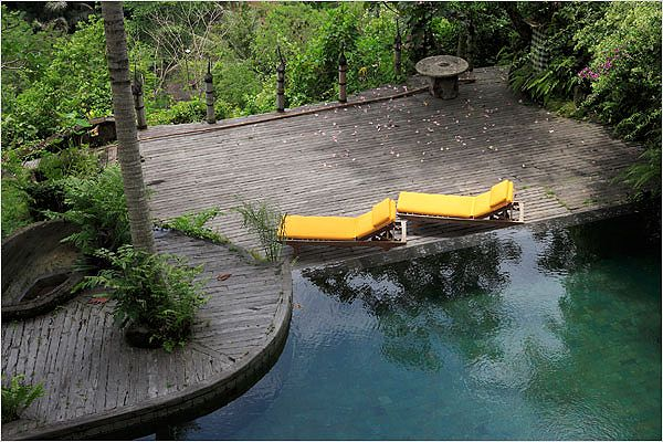 family's swimming pool