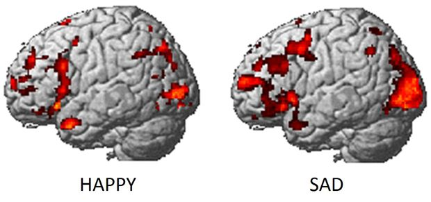 repin. Mapping #emotions in the brain. CMU researchers identify brain activity for each emotion.