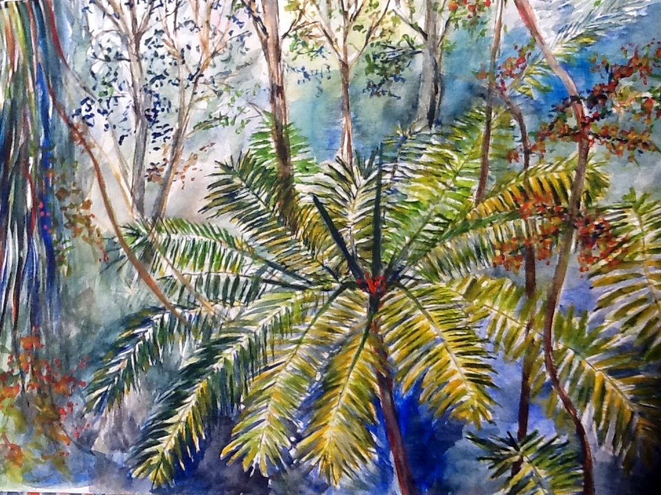 All About the Tropics Watercolour Artwork by Artist Sharon Wood swoody@internode.on.net