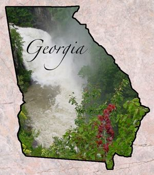 Pin By Hilary Wolfe On Georgia On My Mind Georgia State State