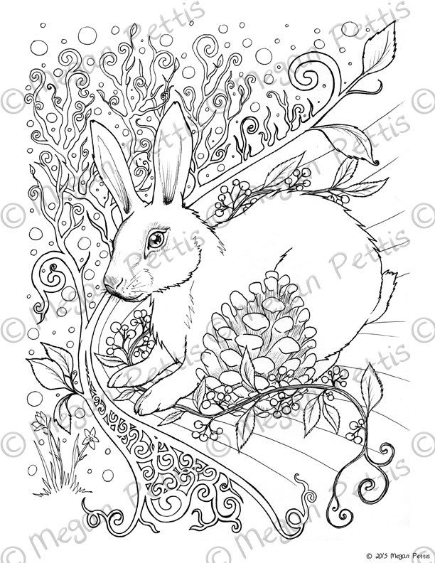 Forest Rabbit Adult Coloring Book Page Instant Download Digital